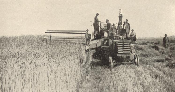 Mietitrebbia trainata da trattore FIAT ( Maccarese 1938)